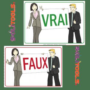 Outil pédagogique SKILITOOL cartes vrai faux d'animation